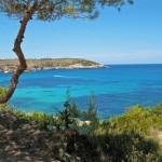 Ibiza alternativa, itinerario tra natura e gusto