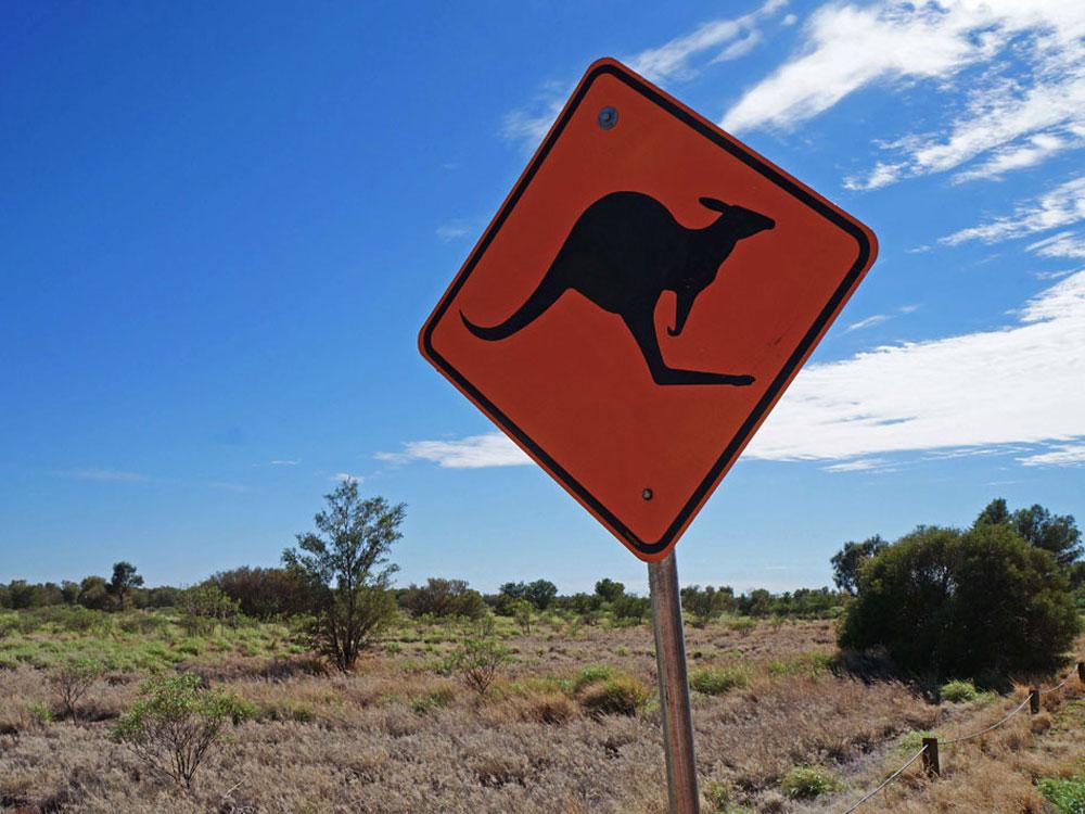 Le cose pi strane di un viaggio in australia travel on art for Foto di case strane