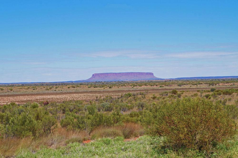 cose più strane di un viaggio in australia