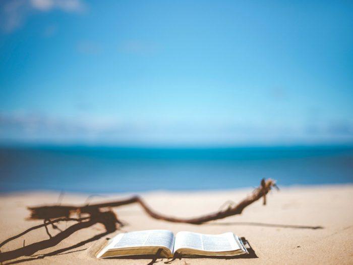 arte-in-vacanza-libri