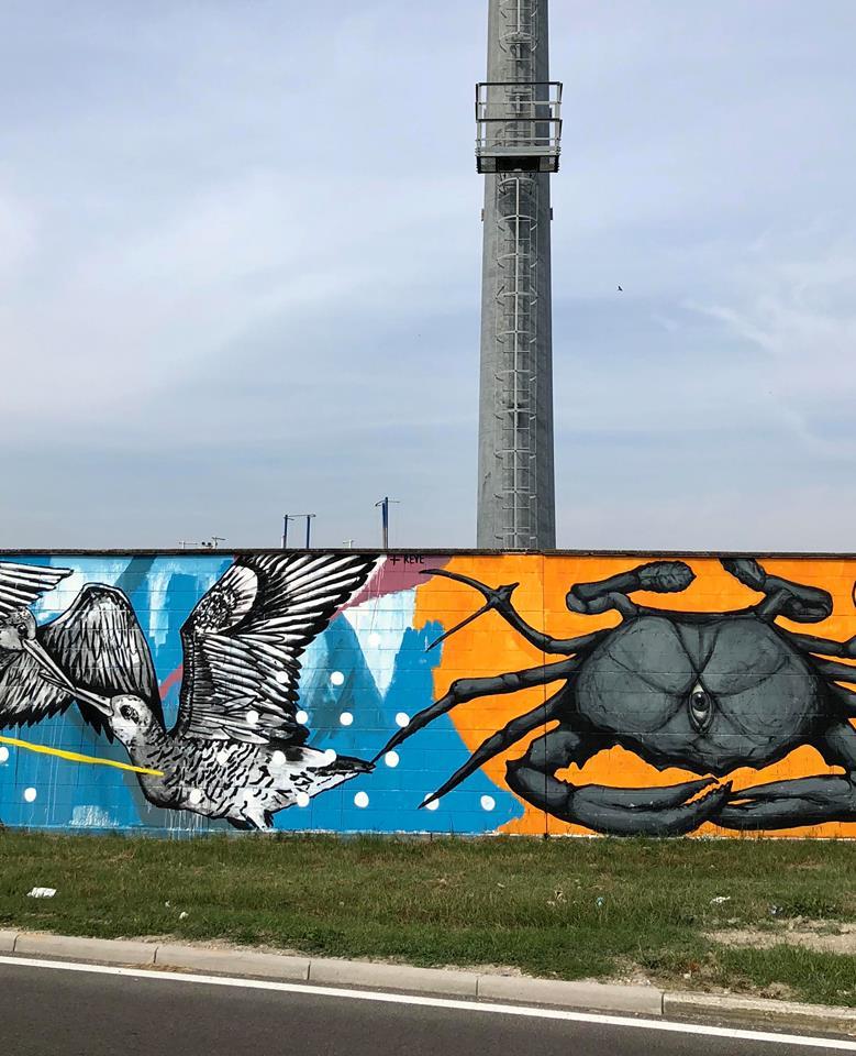street art a comacchio dettagli opere