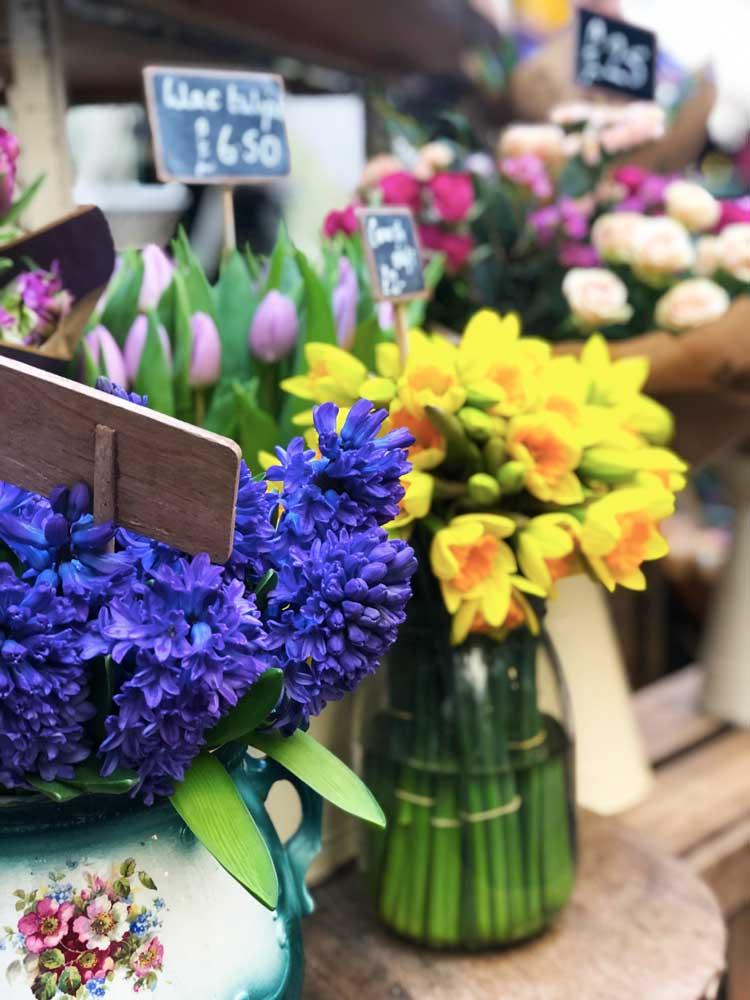 cosa vedere bristol in 2 giorni st nicholas market fiori