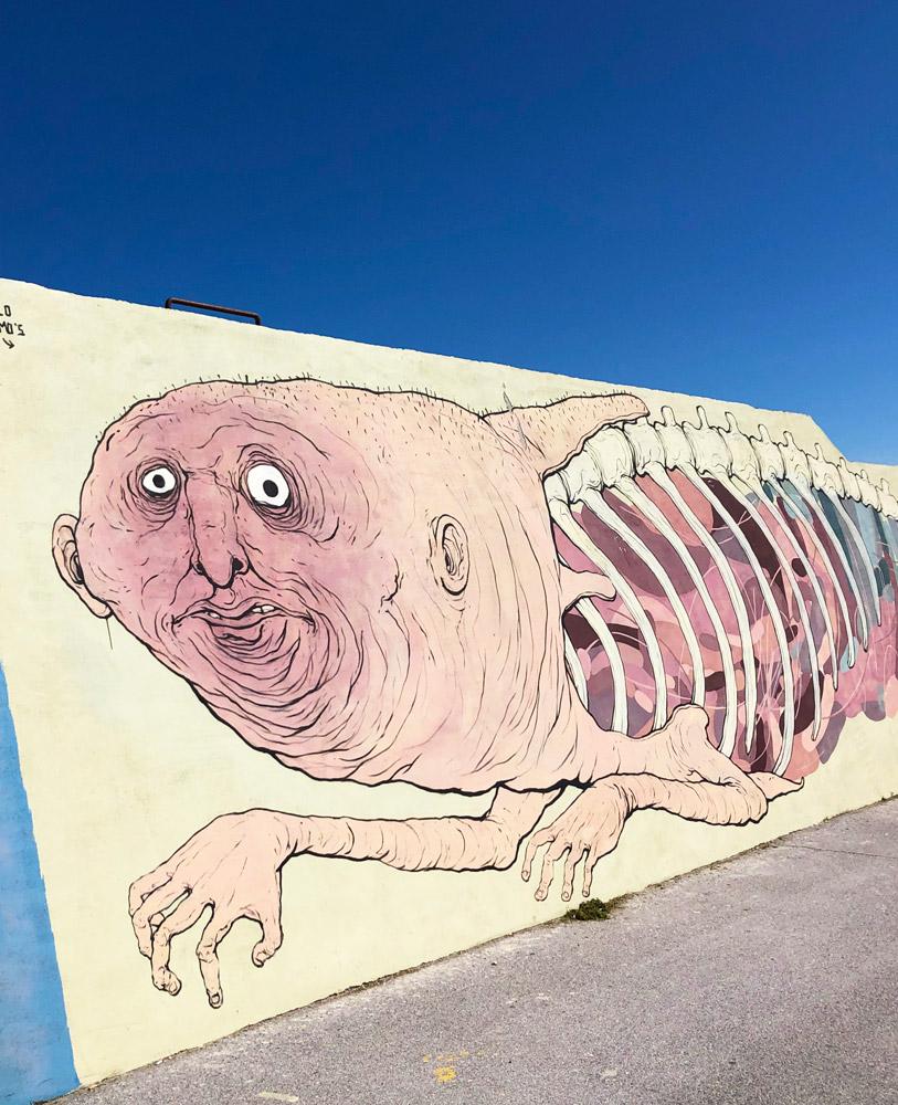street art porto civitanova marche vedo a colori nemos