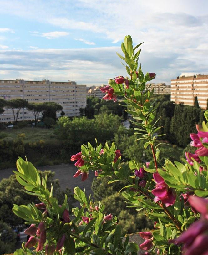 art hotel roma warmth hotel
