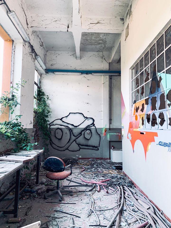 ex distilleria eridania ferrara muro