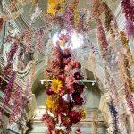 Florilegium a Parma: l'installazione floreale di Rebecca Louise Law