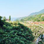 Toscolano Maderno: un weekend da sogno tra glamping e oliveti