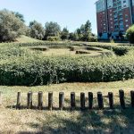 Parco Arte Vivente Torino: guida alla visita tra arte e natura