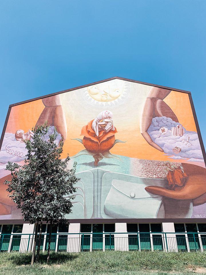 street art torino zed one