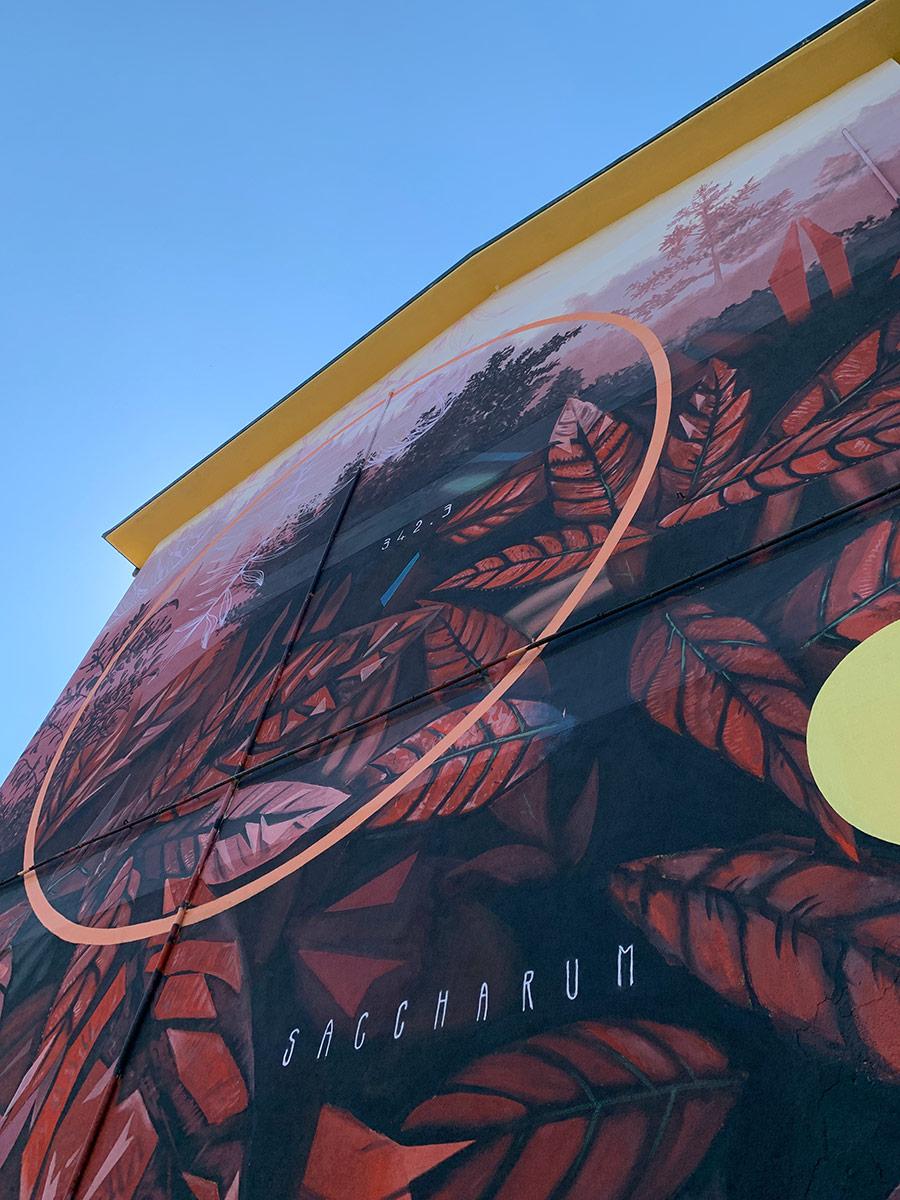 street-art-molinella-fabio-petani